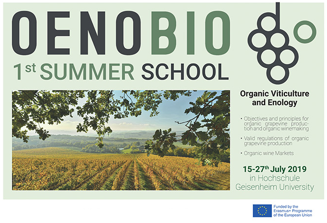 Visuel OENOBIO Summer School 1